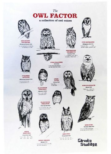 The Owl Factor Tea Towel
